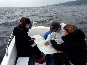 Motorbootkurs vor Horn am Bodensee, Untersee